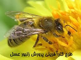 قیمت کندو عسل سال 95 دانلود طرح توجیهی زنبورداری - طرح توجیهی پرورش زنبور عسل ...